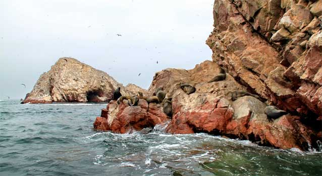 islas-ballestas-city